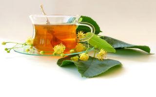 Терапевт о сухом кашле: о чем говорит, особенности, лечение
