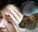 Геморрагическая лихорадка: причины и виды, симптомы, лечение