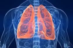 Одна ноздря заложена, не дышит: левая или правая