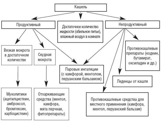 Сиропы от кашля: врач о видах и отличиях, обзор представителей по группам