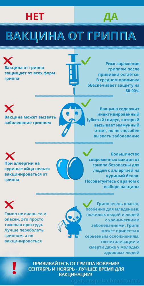 Грипп 2019: штаммы, характерные симптомы, лечение и профилактика