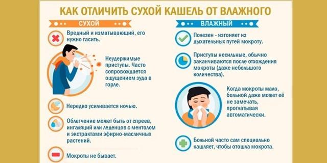 Ингаляции при кашле: терапевт о грамотном применении, видах, средствах и правилах