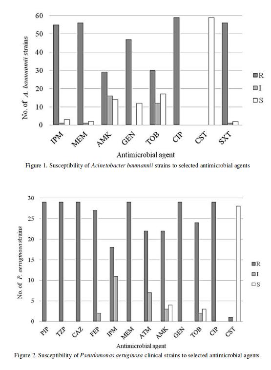 acinetobacter (ацинетобактер) baumannii, lwoffii, spp - свойства, патогенность, лечение