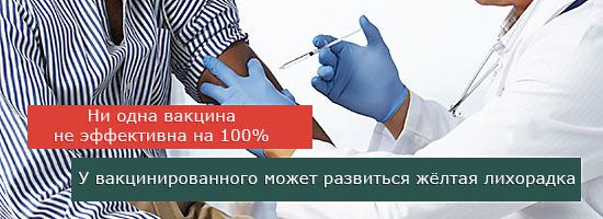Желтая лихорадка: что это, заражение и прививка, симптомы, лечение