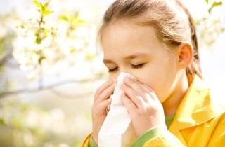 Болезни носа, носоглотки, околоносовых пазух: названия, признаки и методы лечения