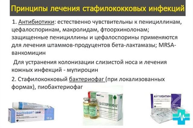 staphylococcus epidermidis, эпидермальный стафилококк - что это в мазке, норма, свойства