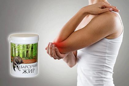 Барсучий жир - лечебные свойства и способы применения