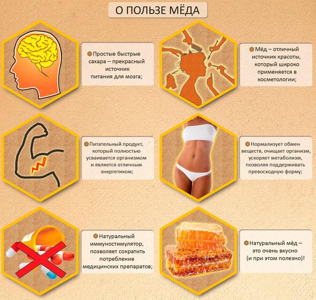 Помогает ли репа с мёдом от кашля?