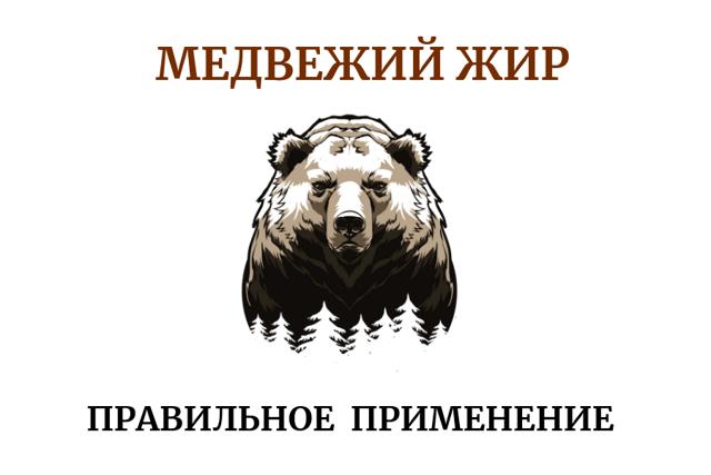 Медвежий жир – свойства и противопоказания, как и кому приименять