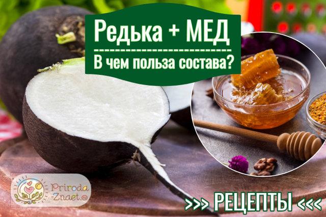 Редька с медом от кашля – рецепты, как приготовить и принимать